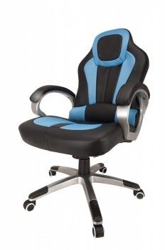 RayGar Deluxe Padded Sports Racing, Gaming & Office Chair - Blue